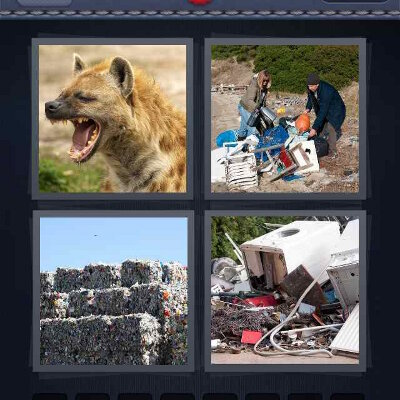 4 Pics 1 Word Answers 8 Letters