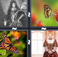 The answer is: Monarch