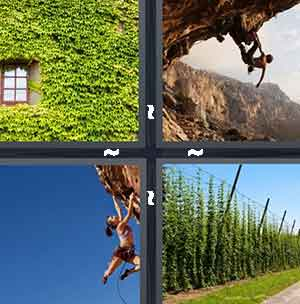 level 1203 4 pics 1 word answers On window 4 pics 1 word