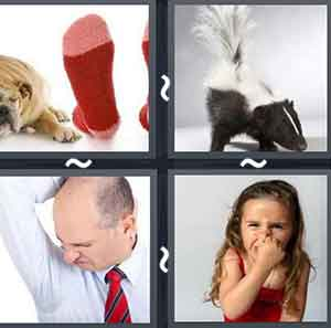 Level 2496 4 pics 1 word answers 4 pics 1 word level 2496 expocarfo Gallery