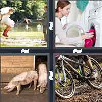 4 Pics 1 Word level 1