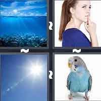4 Pics 1 Word level 1-7 4 Letters
