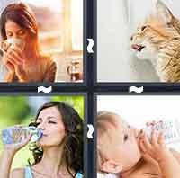 4 Pics 1 Word level 21