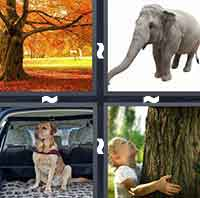 4 Pics 1 Word level 1-13 5 Letters