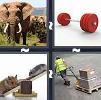 4 Pics 1 Word level 2-5 5 Letters