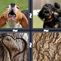 4 Pics 1 Word level 107