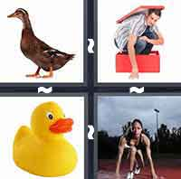 4 Pics 1 Word level 4-8 4 Letters