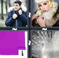 4 Pics 1 Word level 5-1 4 Letters