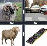 4 Pics 1 Word level 3-7 3 Letters