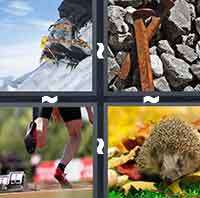 4 Pics 1 Word level 307