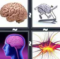 4 Pics 1 Word level 7-3 5 Letters