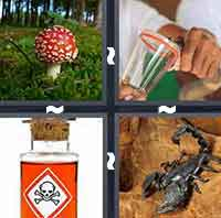 4 Pics 1 Word level 4-9 6 Letters