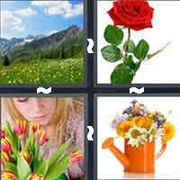 4 Pics 1 Word level 7-7 6 Letters