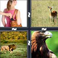4 Pics 1 Word level 12-3 4 Letters