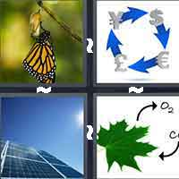 4 Pics 1 Word level 8-8 7 Letters