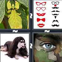 4 Pics 1 Word level 5-13 8 Letters