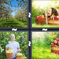 4 Pics 1 Word level 10-4 7 Letters