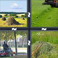 4 Pics 1 Word level 4-11 3 Letters