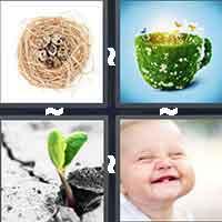 4 Pics 1 Word level 893
