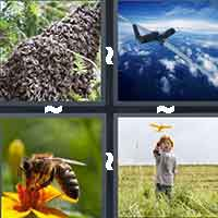 4 Pics 1 Word level 907