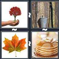 4 Pics 1 Word level 1015