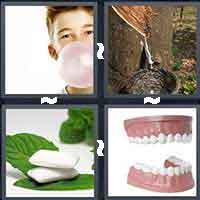 4 Pics 1 Word level 1017