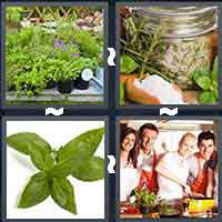 4 Pics 1 Word level 16-9 4 Letters