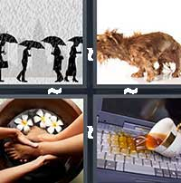4 Pics 1 Word level 13-2 7 Letters
