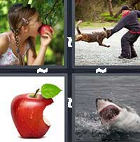 4 Pics 1 Word level 18-3 4 Letters