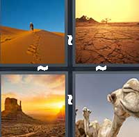 4 Pics 1 Word level 16-11 6 Letters