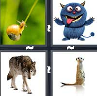 4 Pics 1 Word level 9-2 8 Letters