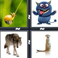 4 Pics 1 Word level 1217