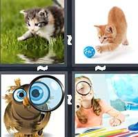 4 Pics 1 Word level 1224