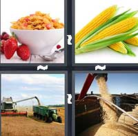 4 Pics 1 Word level 18-10 4 Letters