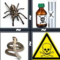 4 Pics 1 Word level 17-4 6 Letters