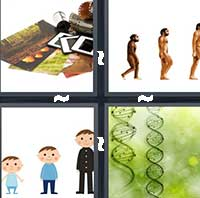 4 Pics 1 Word level 15-13 7 Letters