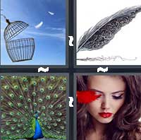 4 Pics 1 Word level 16-1 7 Letters