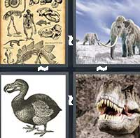 4 Pics 1 Word level 9-14 8 Letters