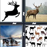 4 Pics 1 Word level 20-5 4 Letters