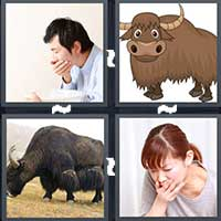 4 Pics 1 Word level 8-5 3 Letters