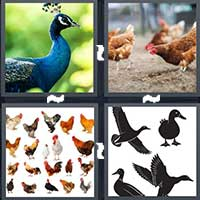 4 Pics 1 Word level 22-14 4 Letters