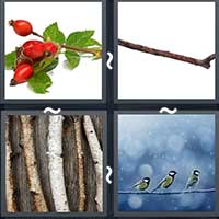 4 Pics 1 Word level 1700