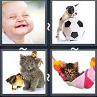 4 Pics 1 Word level 1705