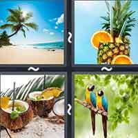4 Pics 1 Word level 2088