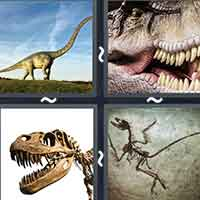 4 Pics 1 Word level 17-4 8 Letters