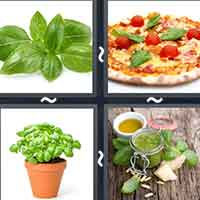 4 Pics 1 Word level 33-6 5 Letters