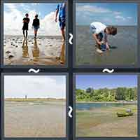 4 Pics 1 Word level 2309