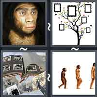 4 Pics 1 Word level 18-13 8 Letters