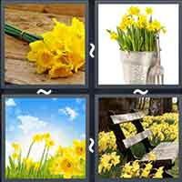 4 Pics 1 Word level 18-15 8 Letters
