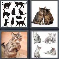 4 Pics 1 Word level 2391